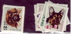 #1636-1643 Poland - Dogs in Natural Colors (MNH)
