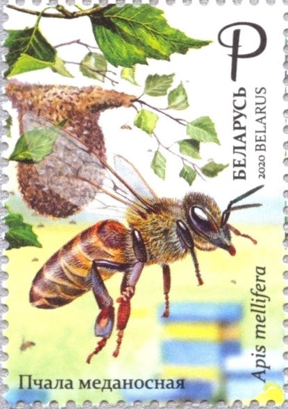 Belarus - 2020 Honey Bee (MNH)