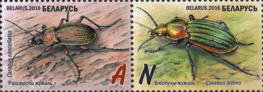 #975-978 Belarus - Endangered Insects: Ground Beetles, Set of 4 (MNH)
