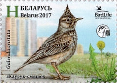 #1041 Belarus - 2017 Bird of the Year: Crested Lark, Single (MNH)