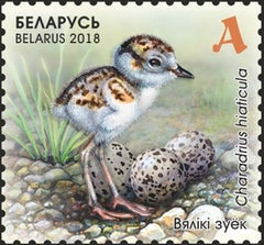 Belarus - 2018 Children's Philately: Chicks M/S (MNH)