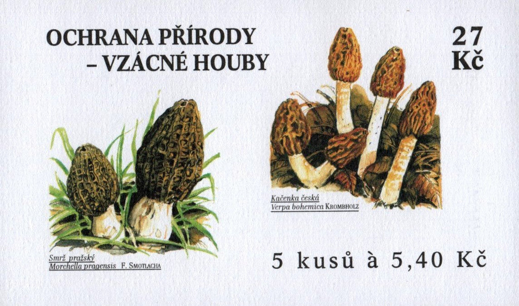 #3127 Czech Republic - Mushrooms, Booklet (MNH)