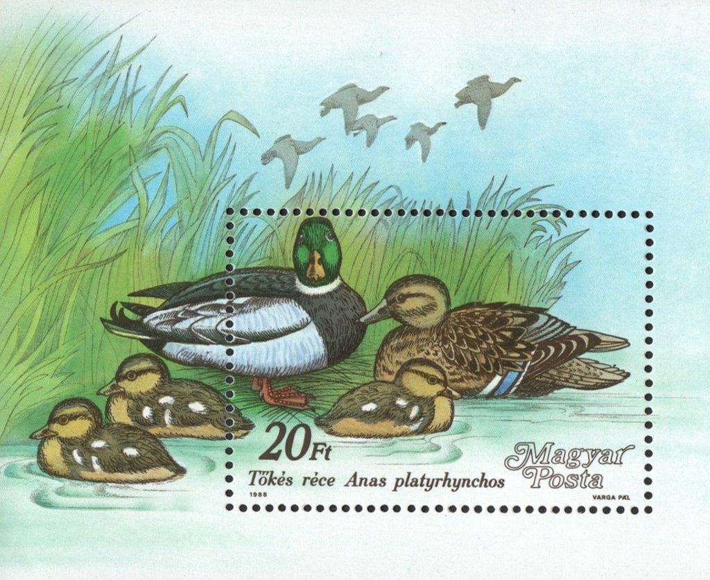 #3141 Hungary - Ducks S/S (MNH)