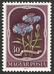 #974-978 Hungary - Flowers (MNH)