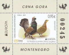 #442a Montenegro - 2019 Europa: National Birds S/S (MNH)