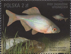 #4245-4248 Poland - Fishes Threatened by Extinction, Set of 4 (MNH)