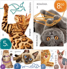 Romania - 2020 Cats, Set of 6 (MNH)