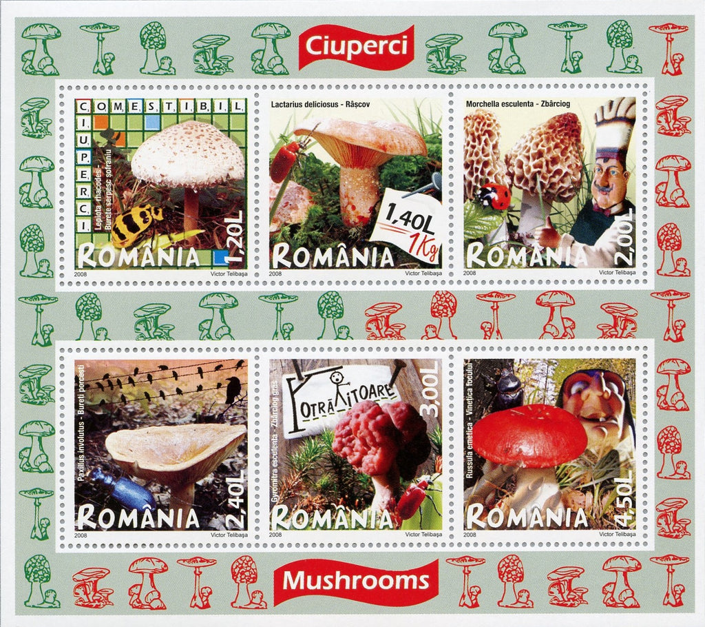 #5017a Romania - 2008 Edible and Poisonous Mushrooms M/S (MNH)