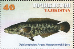 #155-158 Tajikistan - Fish, Set of 4 (MNH)