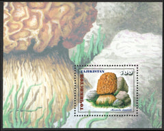 #154 Tajikistan - Mushrooms S/S (MNH)
