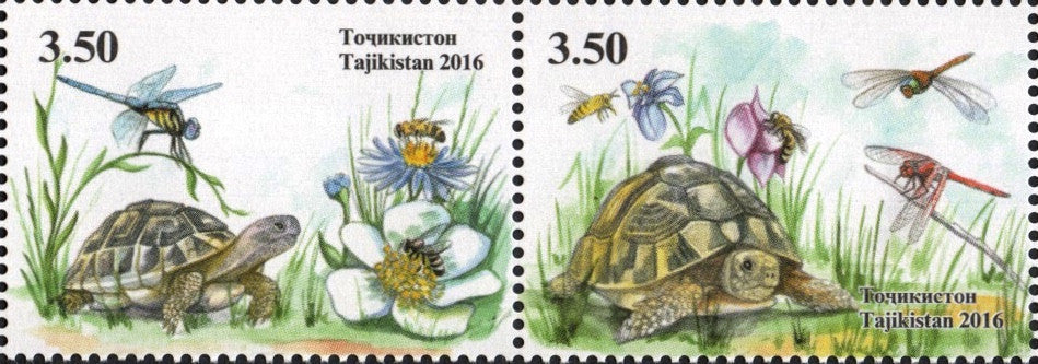#466 Tajikistan - Fauna: Turtles, Pair (MNH)