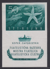 #65a Trieste (Zone B) - Anchovies and Starfish, Imperf S/S (MNH)