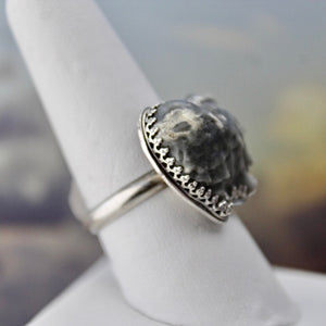 Seashell & Sterling Silver Ring