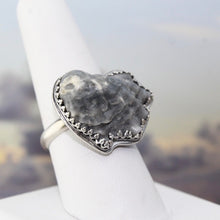 Load image into Gallery viewer, Seashell & Sterling Silver Ring