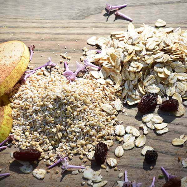 Flavour with Benefits - Oatmeal