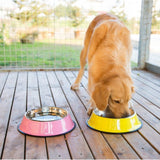 Gamelle pour chat design en inox rose et jaune avec un labrador qui mange - Animal Lovers