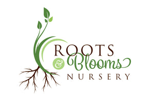 Roots and Blooms Nursery