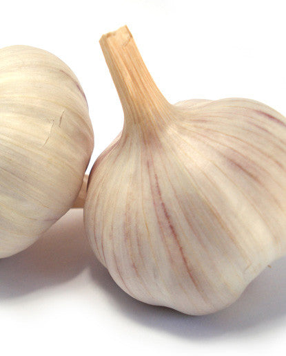 Garlic Flavoring