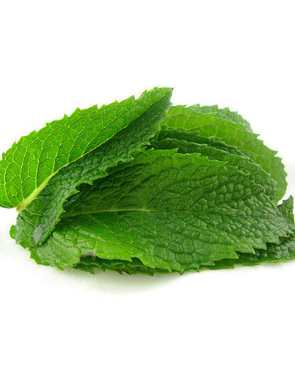 Mint Extract - Oil Soluble Hard Oil