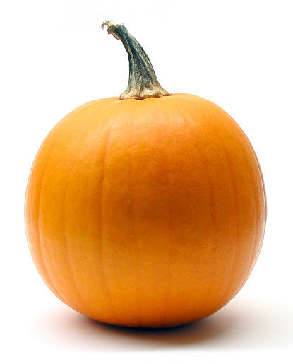 Water Soluble Pumpkin Extract