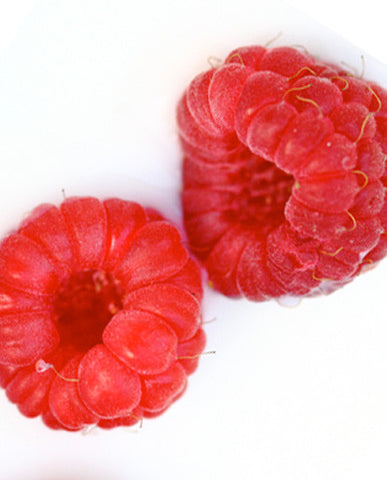 Raspberry (Red) Flavoring