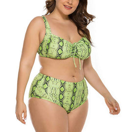 Cinched Snakeskin High Waisted Plus Size Bikini Set