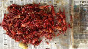 Bayou Bourré: When Crawfish Cravings Come to a Boiling Point