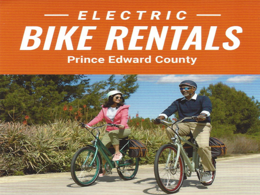 Pedago Electric Bike Rental