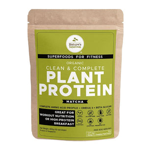 Organic Plant Protein Powder  (with Matcha)