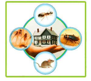 Insect and Pest Repellent (Ultrasonic)