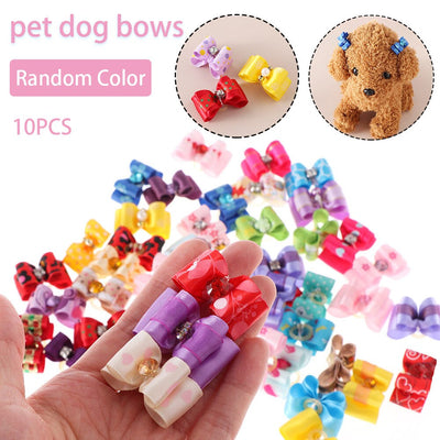 10PCS Color Random Bowknot for Dogs & Cats - For Paw Sakes