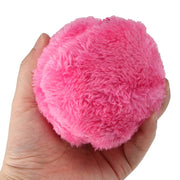 Magic Roller Ball Dog/Cat Toy