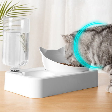 Double Pet Feeder for Cats