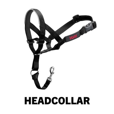 Company of Animals - Halti Headcollar