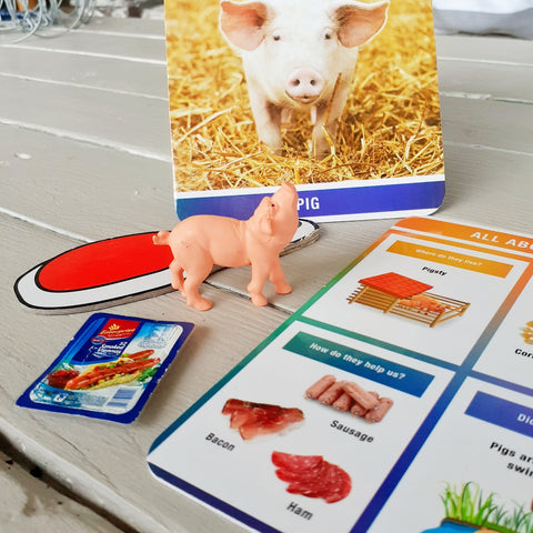 Pig product sorting activity