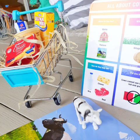 shopping trolley sorting activity