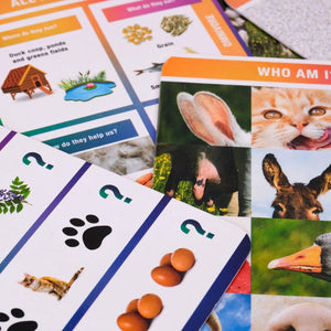 A variety of cards showing different activities
