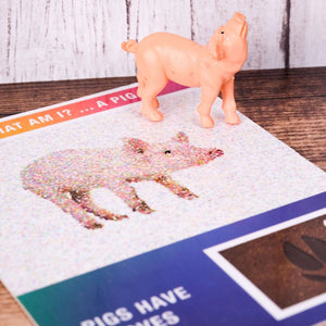 Close up of abstract identification card with pig