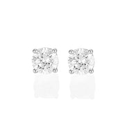 Palomino Solitaire Diamond Stud Earrings in 18 ct White Gold 2.00 ct
