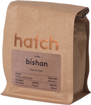 hatch coffee roasters logo