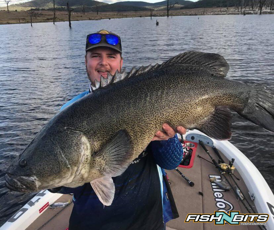 Fishing Report 3rd July 2020