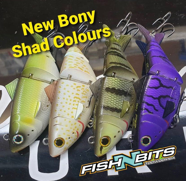 Bony Shad - New Colours