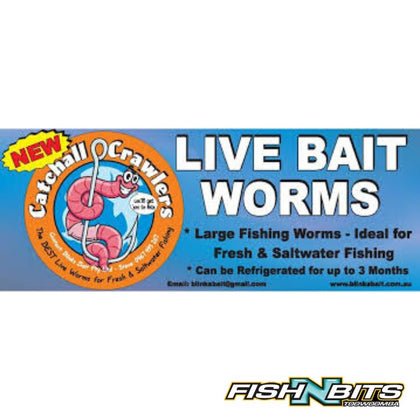 Blinks Bait - Worms 40pk