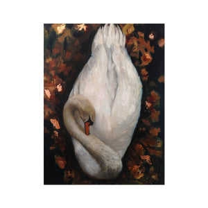 Sleeping Swan | Swan Wall Art Print | MGallery, Shop Swan Wall Art Prints at MGallery! Decorate your walls with High Quality Animal Artwork prints. Fast Worldwide Delivery Available! -mgallery