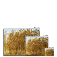 Load image into Gallery viewer, 'Trees Texture 1' by Michael Banks Canvas