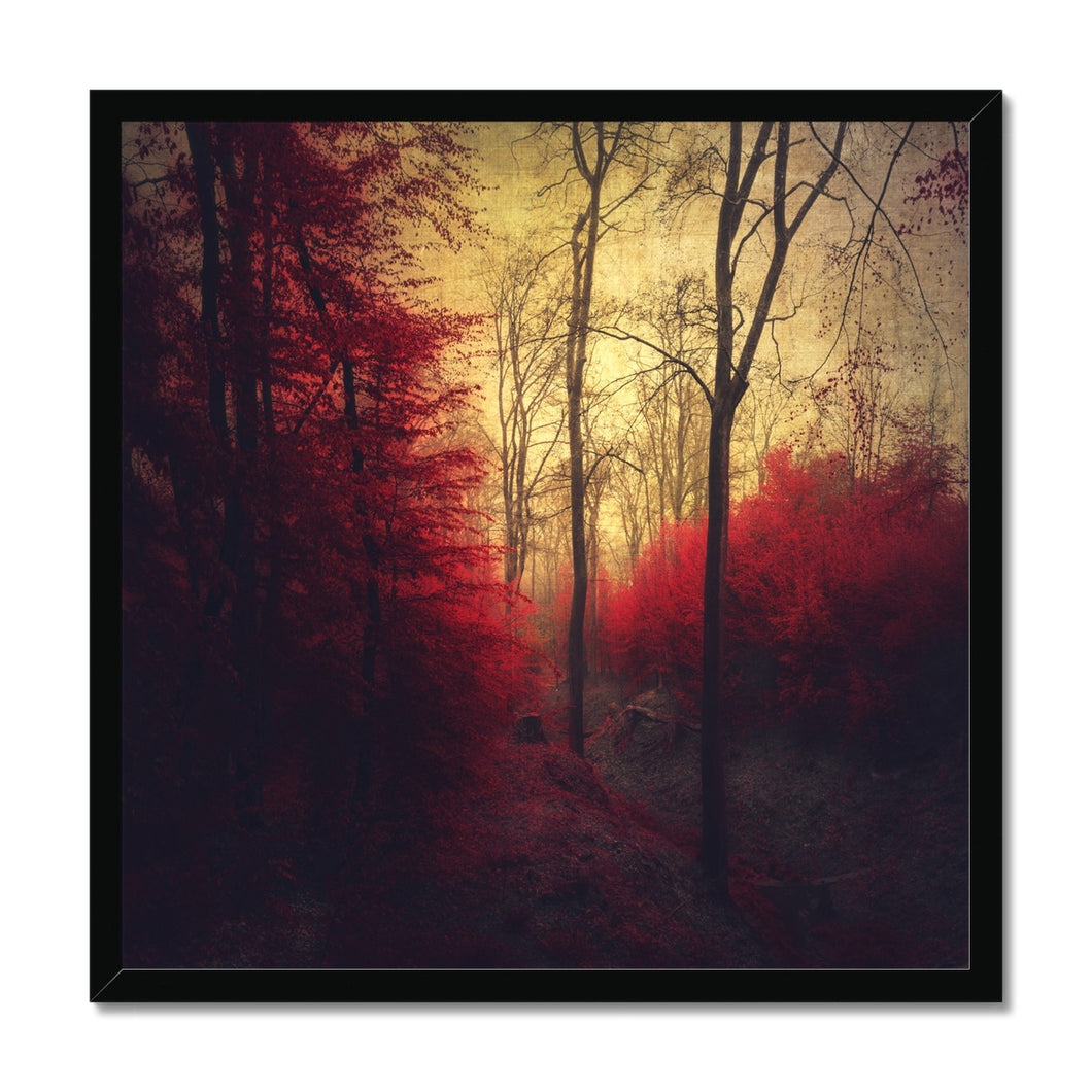 'Ruby Red Forest' by Dirk Wüstenhagen Framed Print