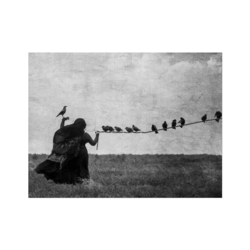 Birds In The Hand | Black and White Modern Arts | MGallery, Design your gallery wall with Black and White Modern Arts. Shop MGallery to find your beautiful Dark Art Deco UK. Delivered ready to hang.-mgallery