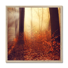 Load image into Gallery viewer, 'Aglow' by  Dirk Wüstenhagen Framed Print