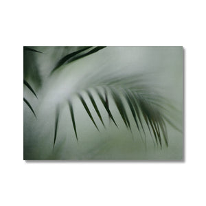 'Palm etch 4' by Michael Banks Canvas