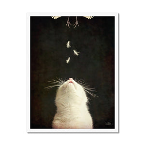 Near Miss | Black and White Animal Art | MGallery, Design your everyday with Mgallery Black and White Animal Art you'll love. Cover your walls with Black and White Animal Wall Prints without frames.-mgallery